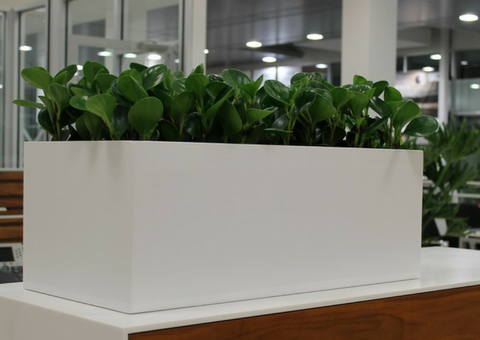 indoor planters large trough planters | PureModern