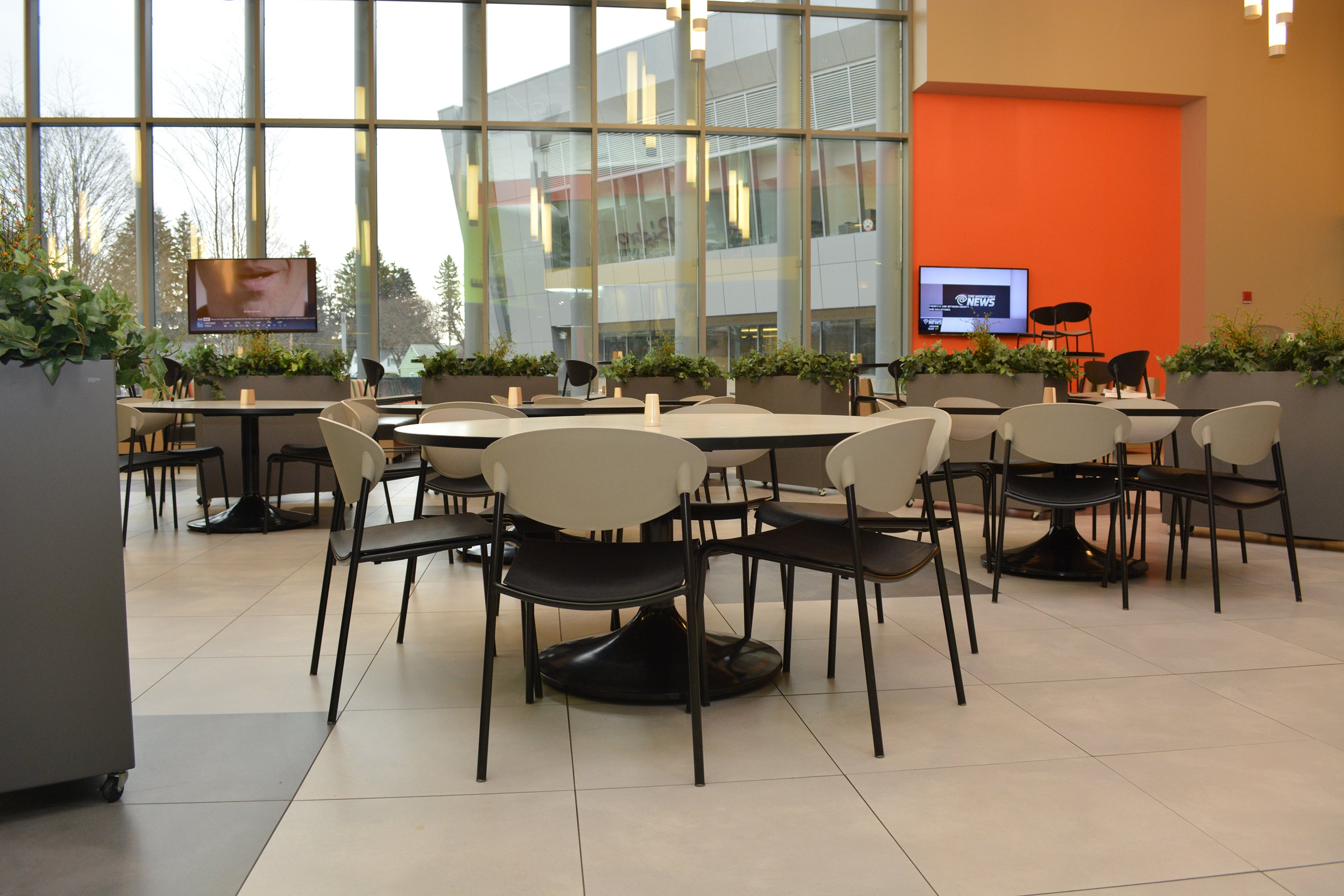 Modern Elite indoor planters at State University of New York campus in Cortland New York with casters