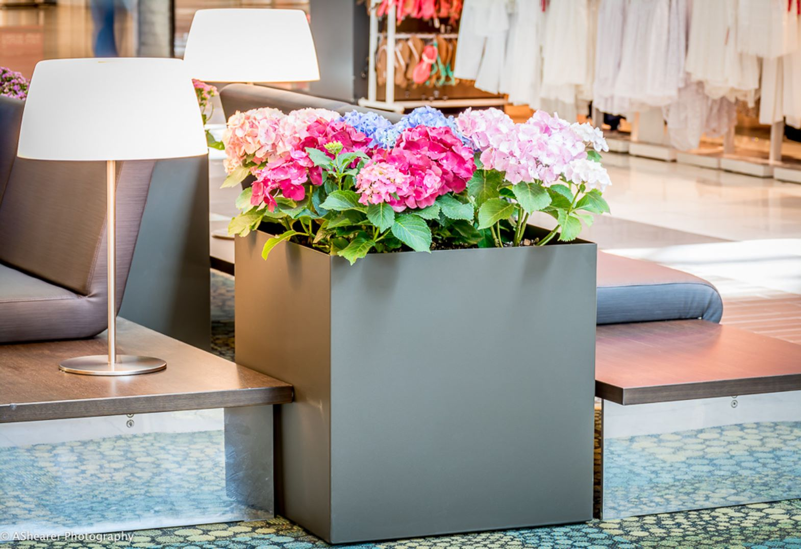 Large square planter with flowers