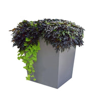 Modern_Elite_Tapered_Planter_Aluminum_Featured_Image.jpg