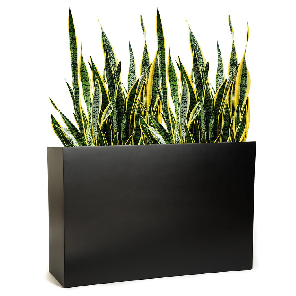Picture of: Modern Cube Tall Rectangle Planter Puremodern