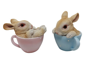 Easter Rabbit in Cup