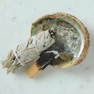 Abalone Shell - Sage & Smudge Sticks