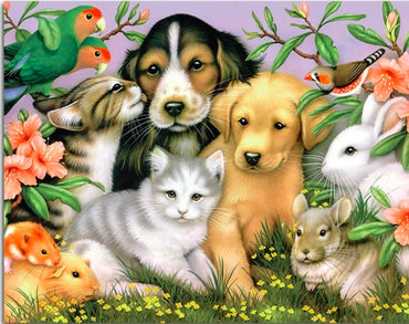 Just Dogs and Friends - Vinci Paint-By-Number Kit
