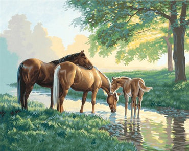 Horses by the Stream - Vinci Paint-By-Number Kit