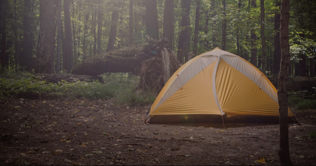 Camping 101: Where to Pitch Your Tent