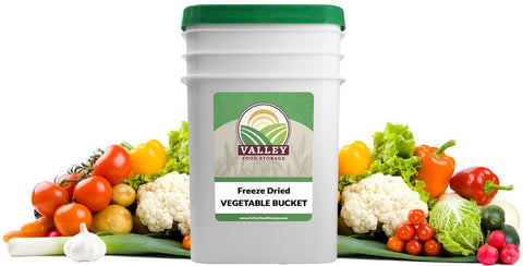 freeze dried fruits vegetables