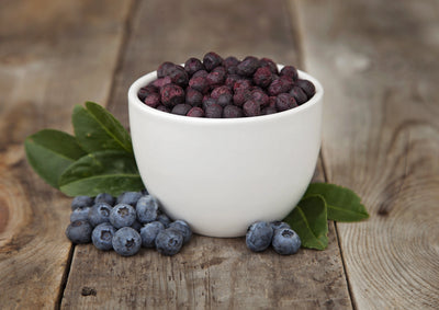 Bulk Freeze Dried Blueberries Valley Food Storage 10 Bags + Bucket