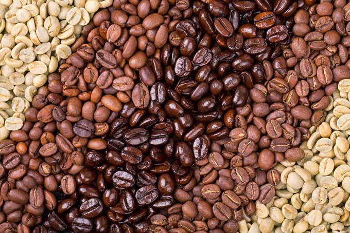 The Roasted Bean - What is the difference?