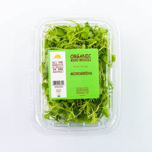 Microgreen Broccoli