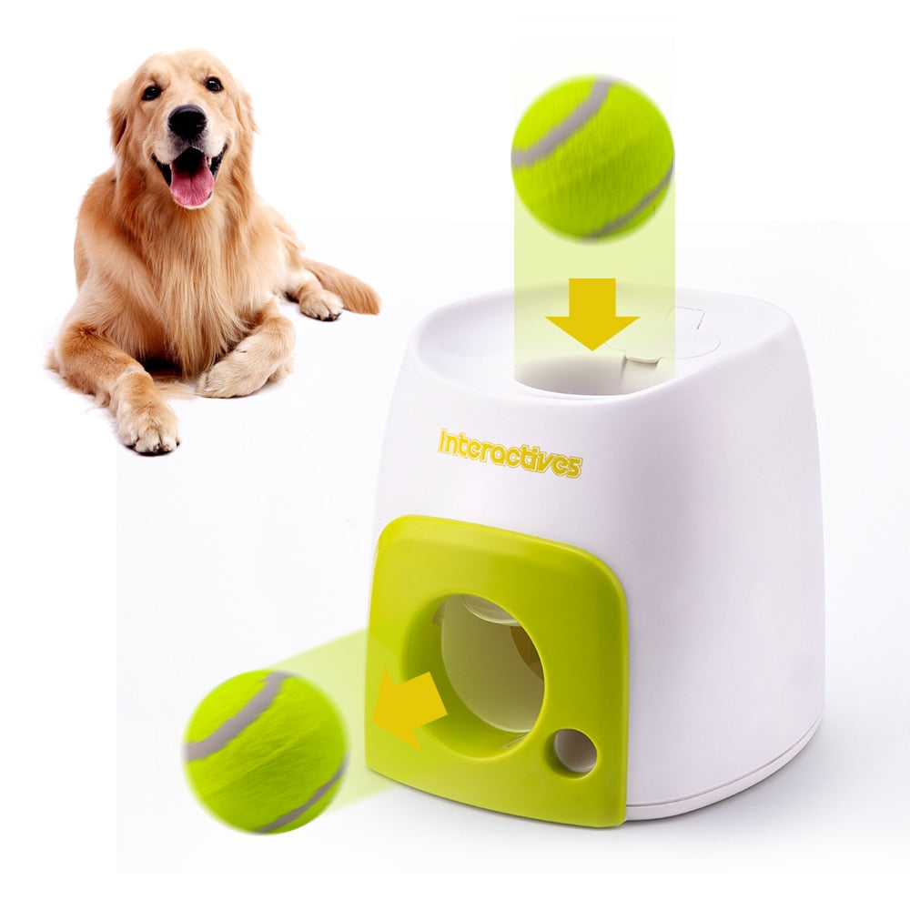 Crittertrends Interactive Fetch Trainer