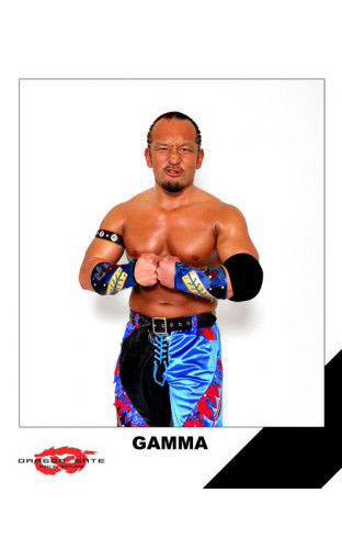 Dragon Gate GAMMA 8x10 Picture