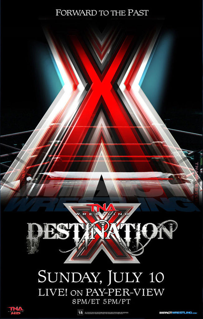 "TNA - Destination X 2011 38""x24"" PPV Poster"
