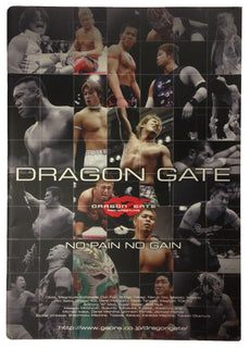 Japanese Dragon Gate Programme (No Pain, No Gain)