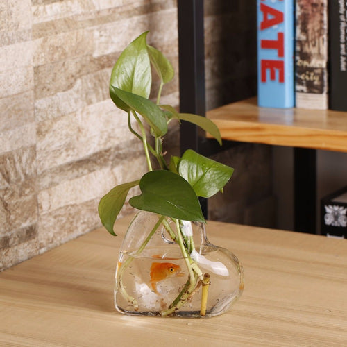 Heart Shaped Transparent Wall Hanging Vase