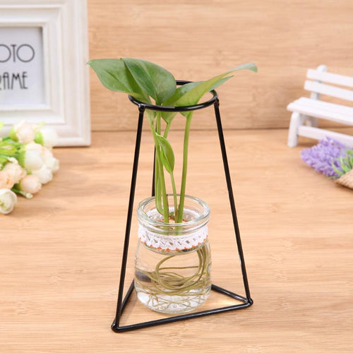 Creative Iron Plant Stand Glass Vase Flower Ornaments
