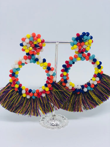 Multi Color Tassle Earrings