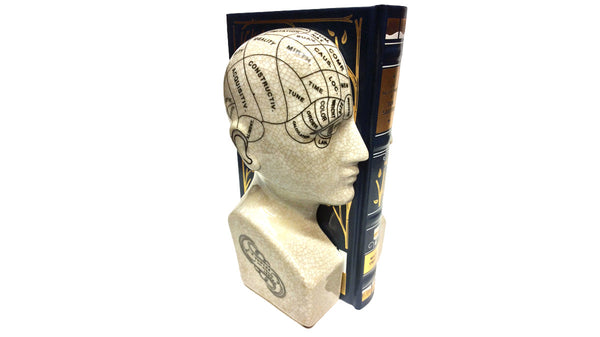 Phrenology Head Bookends