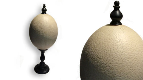 Ornamental Ostrich Egg
