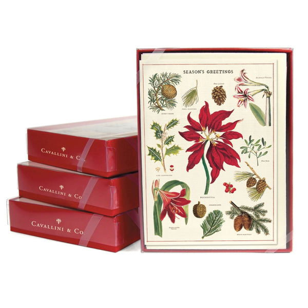Cavallini Boxed Christmas Cards