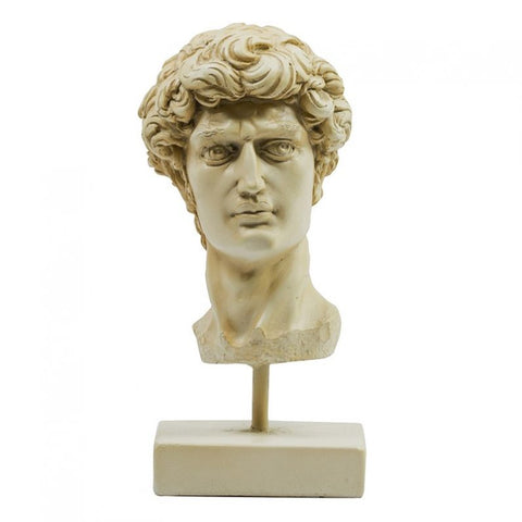 Michelangelo's David Head Sculpture
