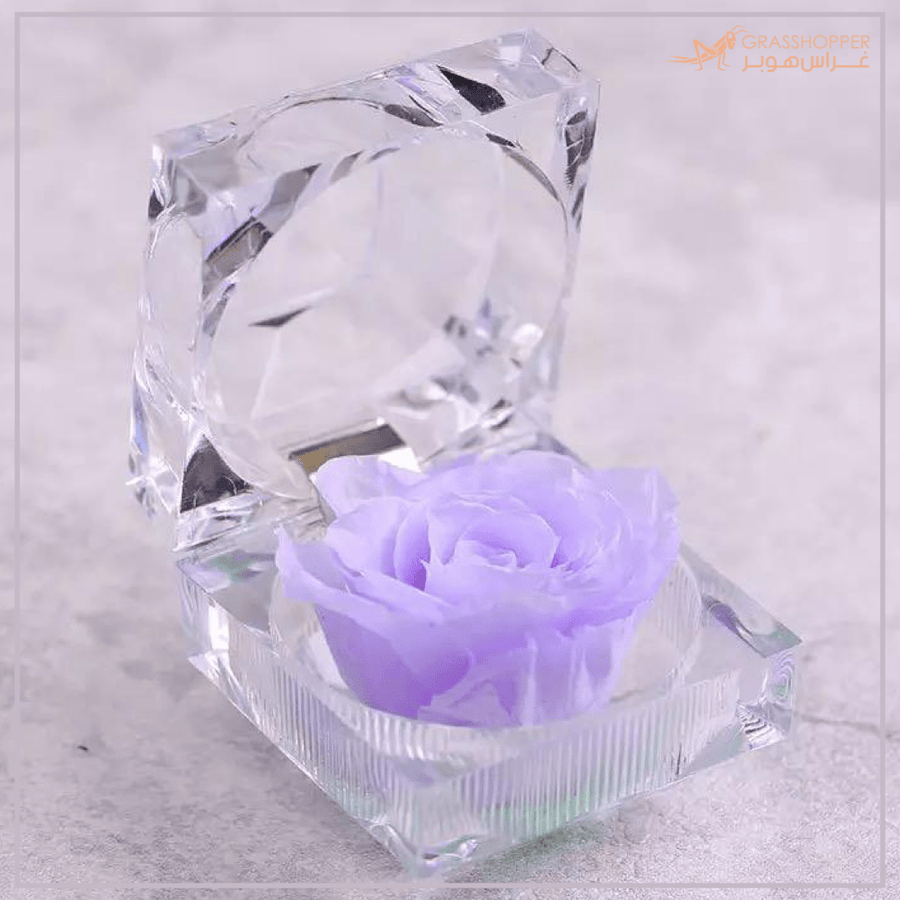 Mini Everlasting Rose