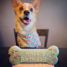 Load image into Gallery viewer, Happy Birthday | Dog Bandana