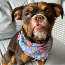 Load image into Gallery viewer, FRIENDS | Dog Bandana
