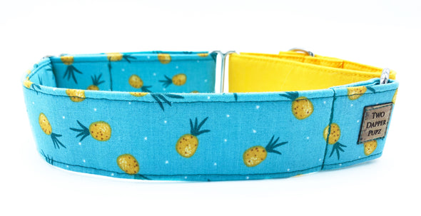 Fynn | Dog Collar