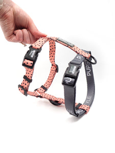 """Morocco"" Adventure Strap Harness"