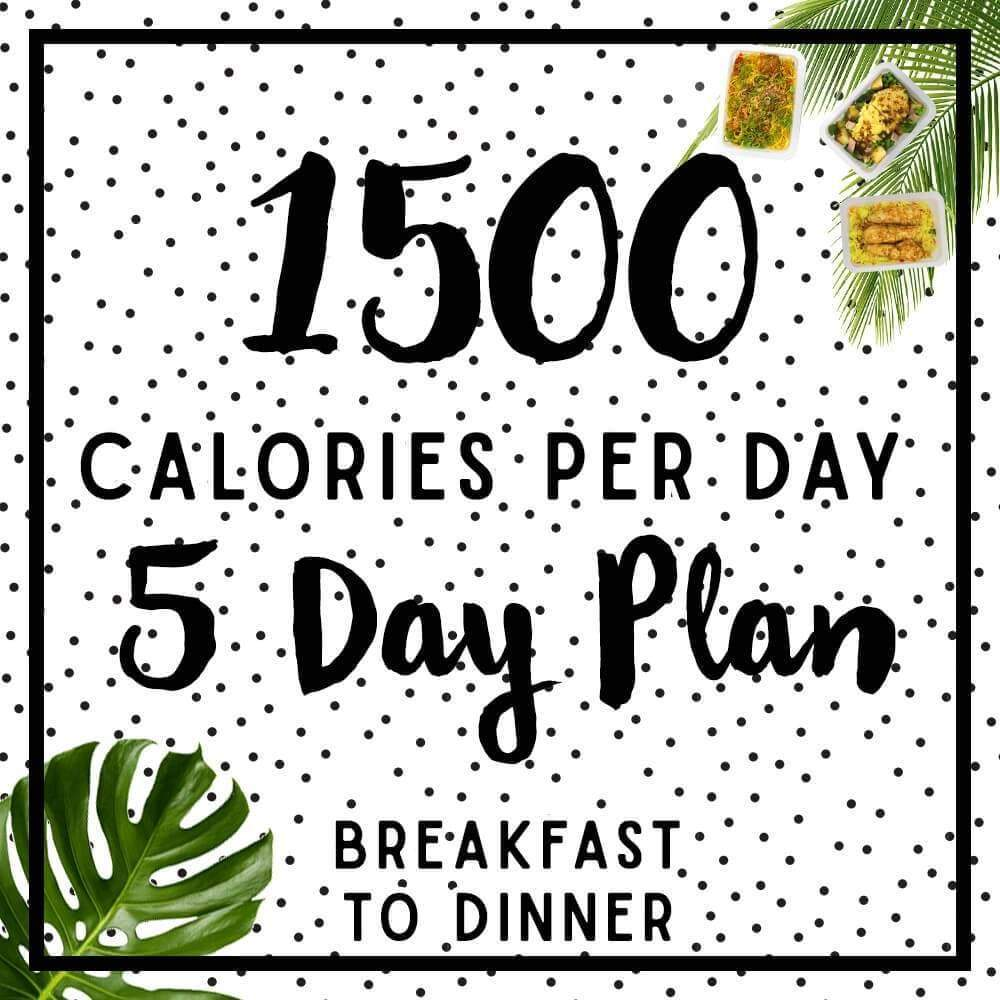 Mens 5 day 1500-1600 calorie meal plan