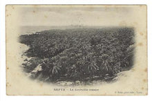 "Load image into Gallery viewer, 1904 Tunisia To France Photo Postcard - ""Nefta - Oasis"" (XX74)"