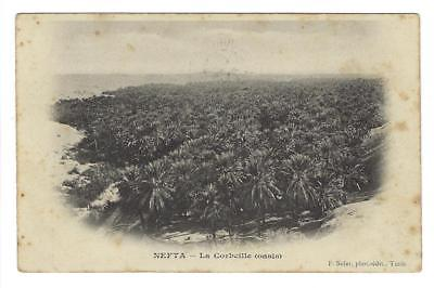 1904 Tunisia To France Photo Postcard -