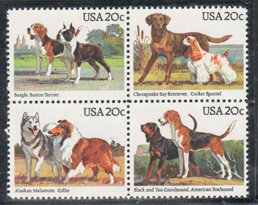 1984 American Dogs Sc 2098-2101 Block Of 4 20c Postage Stamps - MNH - CW210