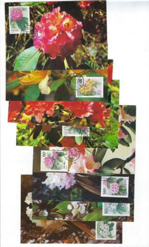 8 1991 PR China First Day Postcards Sc #2330-7 - Rhododendrons Set (R94)