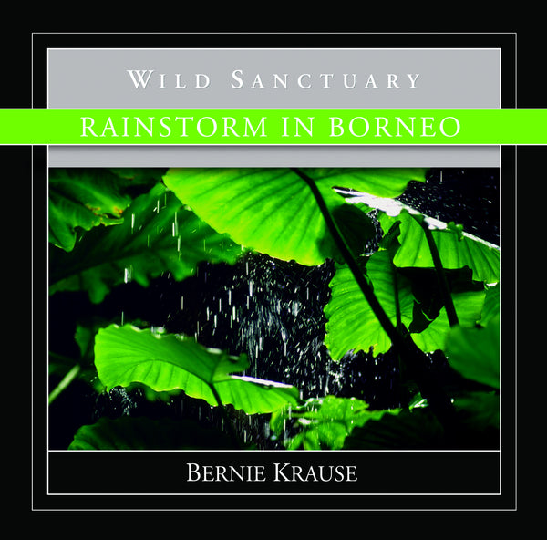 Rainstorm In Borneo