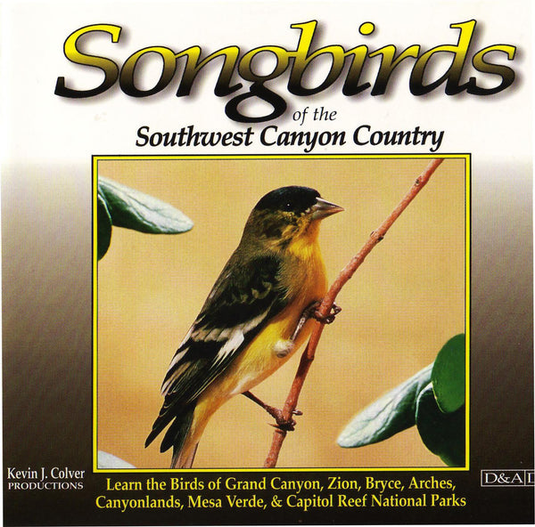 Songbirds Of The Southwest Canyon Country