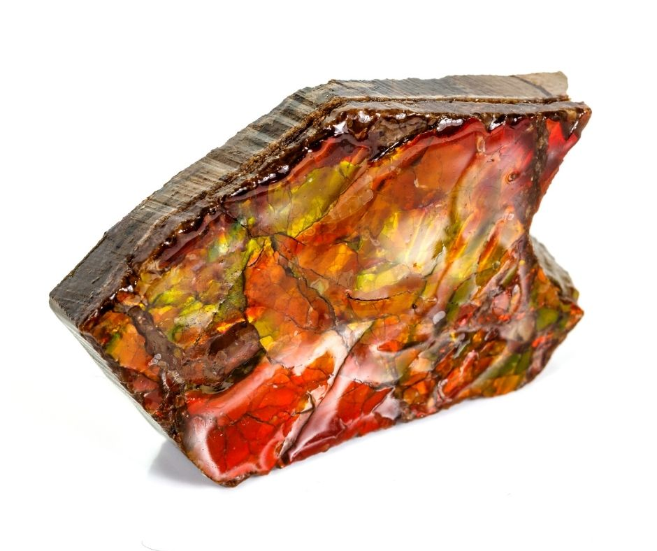 ammolite from canada is ethically sourced