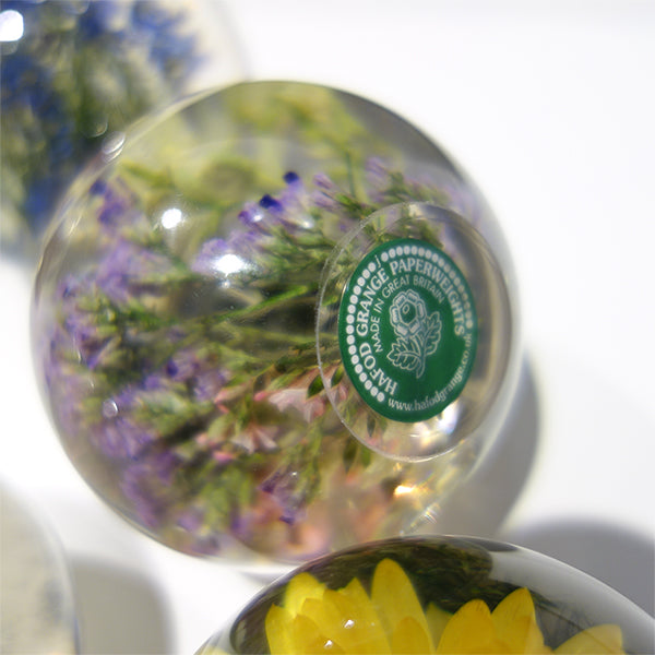 Hafod Grange Paperweight / Heather ヒース