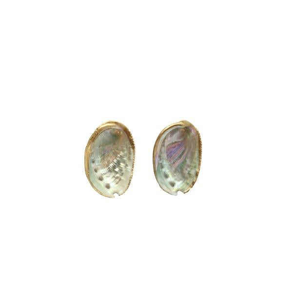 Paua Shell Stud Earrings