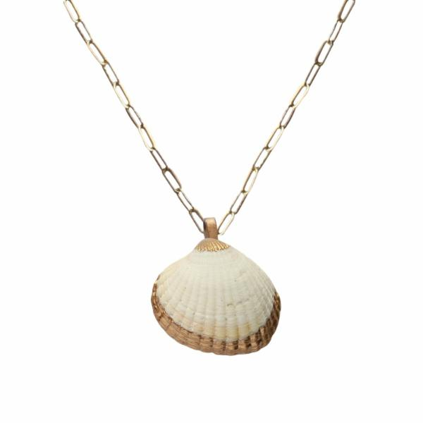 Surf Clam Shell Necklace