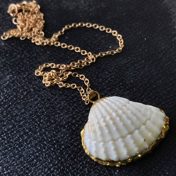 Gold Rimmed Cockle Shell Necklace