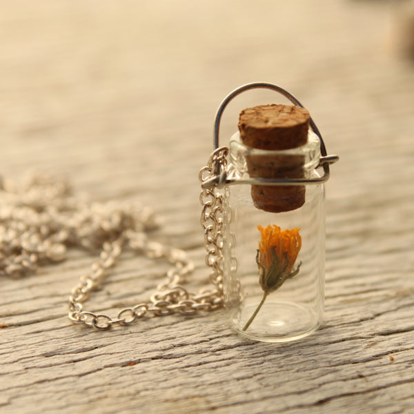Tiny Bottle Memory Keeper Necklace Silver