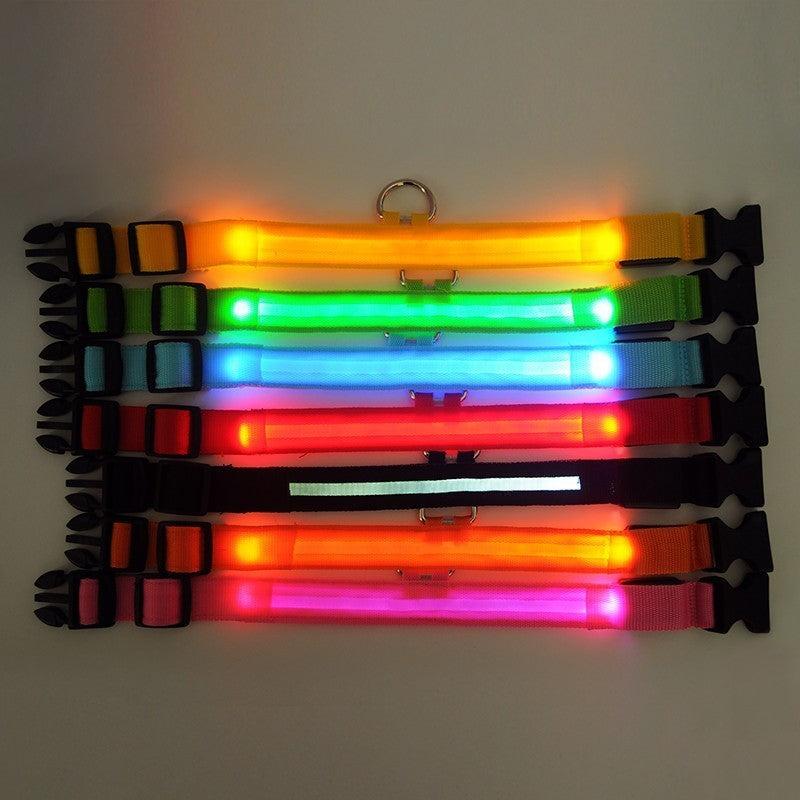 Dog Collar LED Light Night Safety - Monarch Graphics & Design