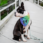 Dog = Love - Pet Bandana - Monarch Graphics & Design