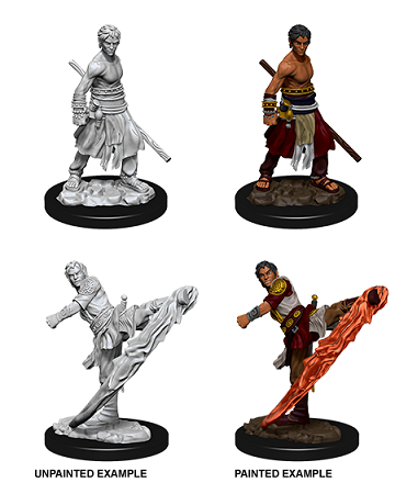 D&D Nolzur's Marvelous Miniatures Half-Elf Monk - Pastime Sports & Games