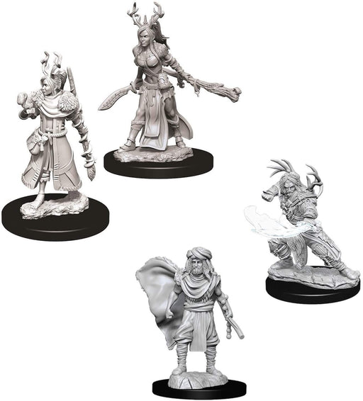 Dungeons & Dragons Nolzur's Marvelous Miniatures Human Druid - Pastime Sports & Games