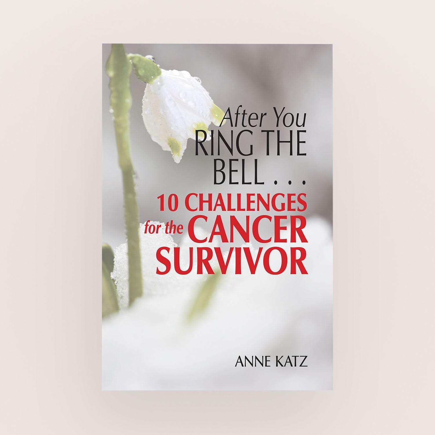 After You Ring The Bell by Anne Katz