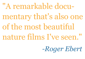 "Quote: ""A remarkable documentary that's also one of the most beautiful nature films I've seen."" - Roger Ebert"