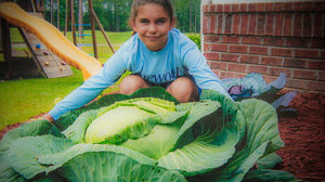 Katie Stagliano with her 40lb cabbage crop